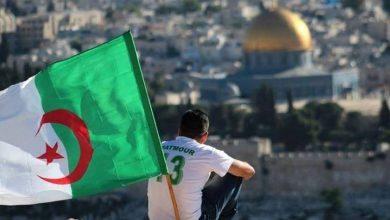 """Photo of أمين مقبول:""""مواقف الجزائر أنعشت القضية الفلسطينية"""""""