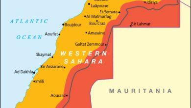 "Photo of ميموني :""الصحراء الغربية حالة تصفية استعمار طال أمدها"""